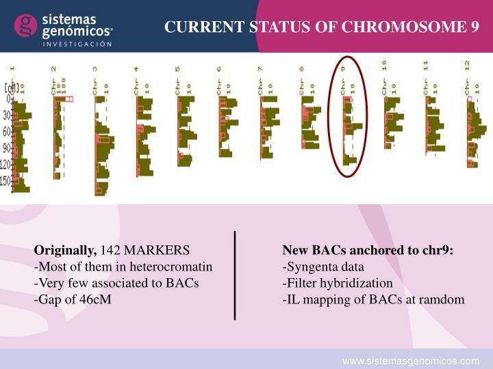 CURRENT STATUS OF CHROMOSOME 9