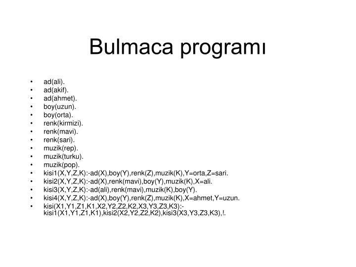 Bulmaca programı