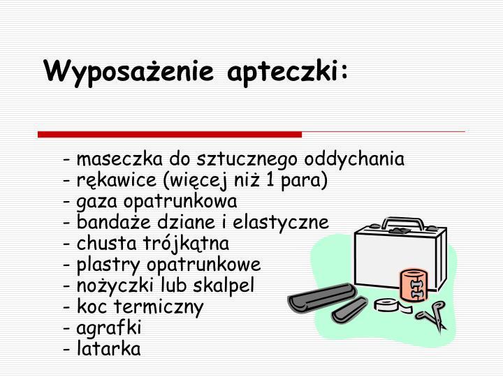 Wyposażenie apteczki: