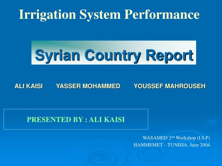 syrian country report n.