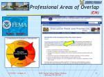 professional areas of overlap em