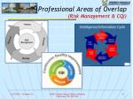 professional areas of overlap risk management cqi