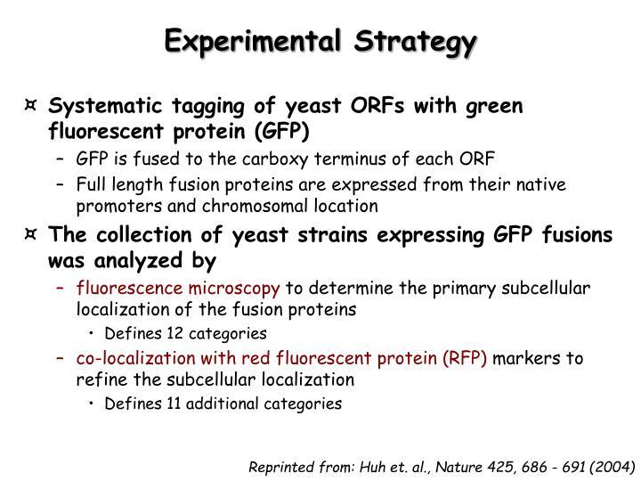 Experimental Strategy