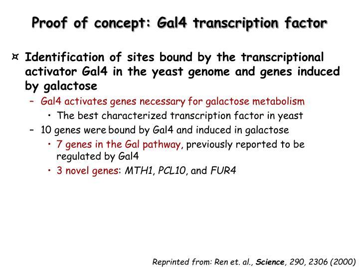 Proof of concept: Gal4 transcription factor