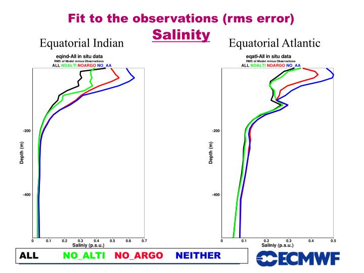 Fit to the observations (rms error)