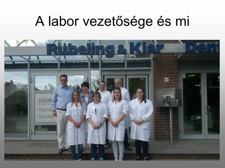 A labor vezetősége és mi