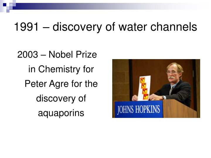 1991 discovery of water channels