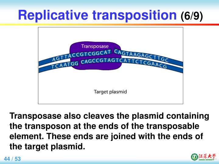 Replicative transposition
