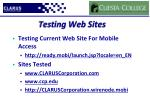 testing web sites
