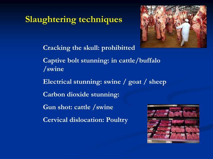 Slaughtering techniques