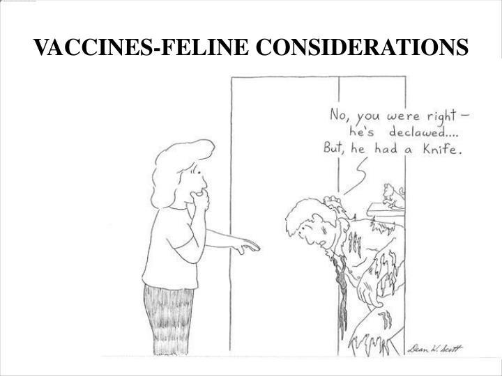 VACCINES-FELINE CONSIDERATIONS