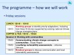 the programme how we will work3