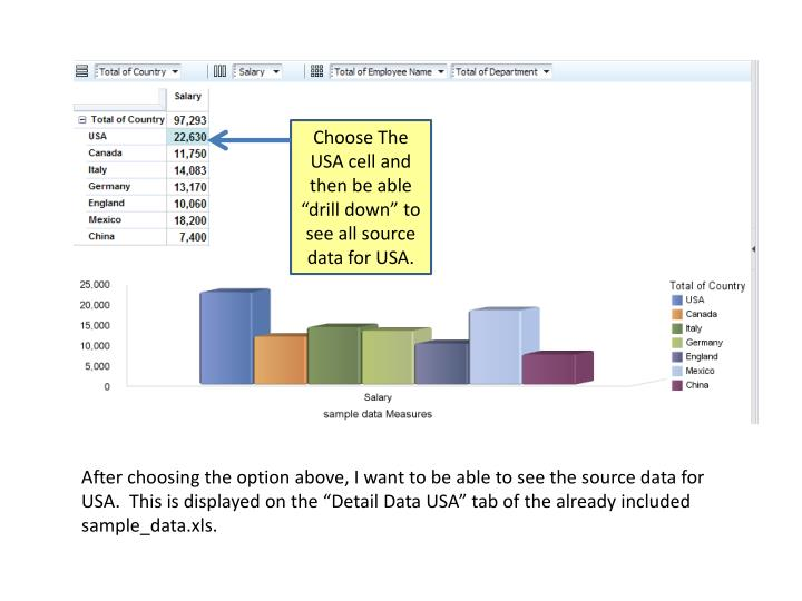 """Choose The USA cell and then be able  """"drill down"""" to see all source data for USA."""