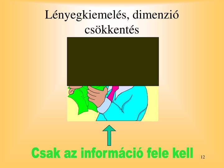 Csak az információ fele kell