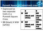 punnett square of codominant cross