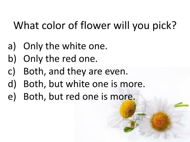 What color of flower will you pick?