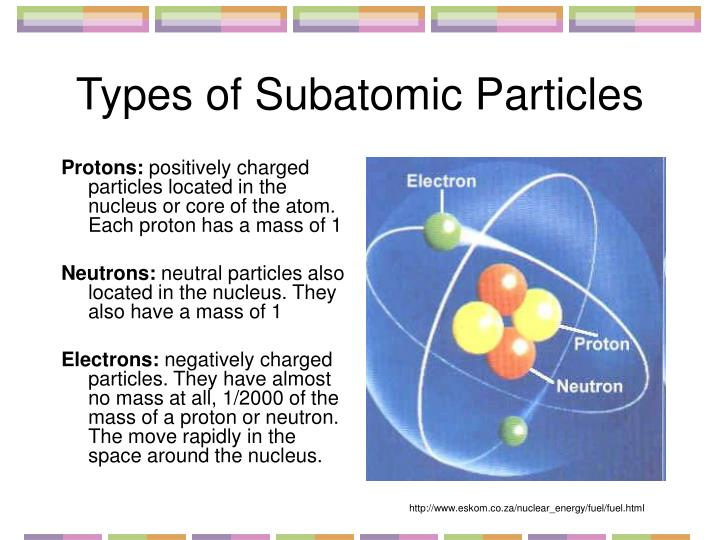 Types of subatomic particles