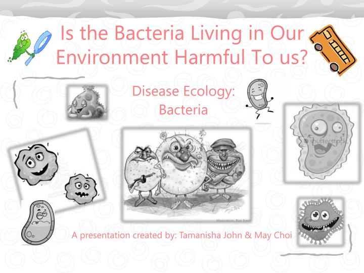 is the bacteria living in our environment harmful to us n.