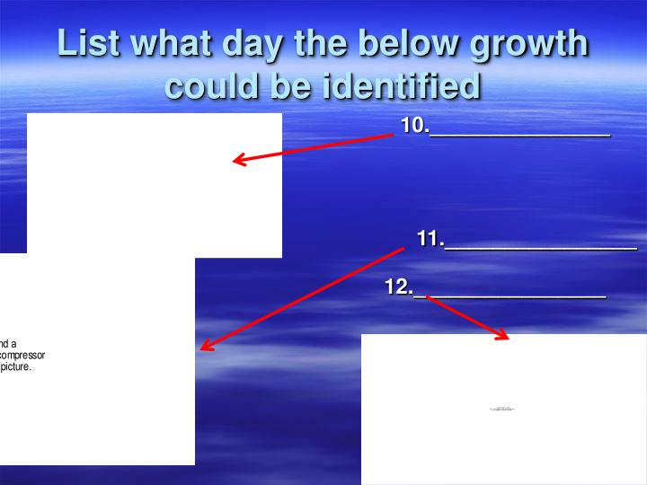 List what day the below growth could be identified