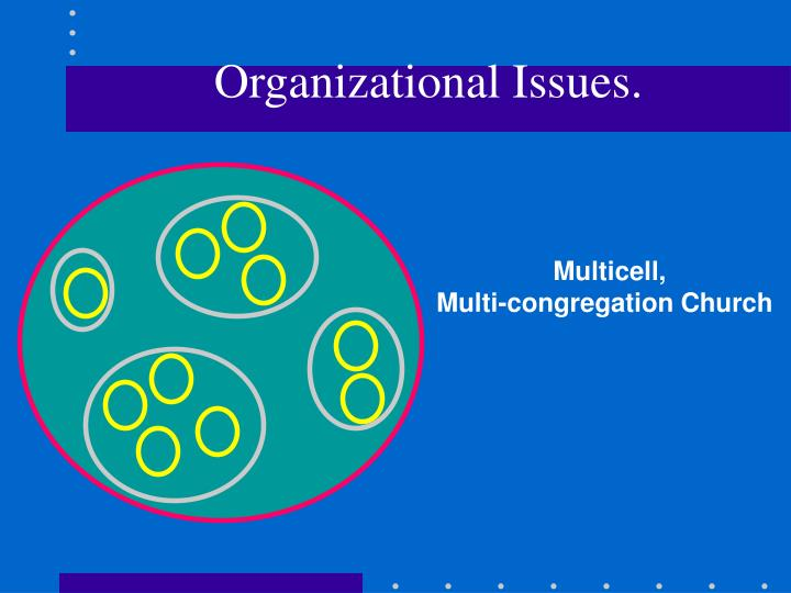 Organizational Issues.