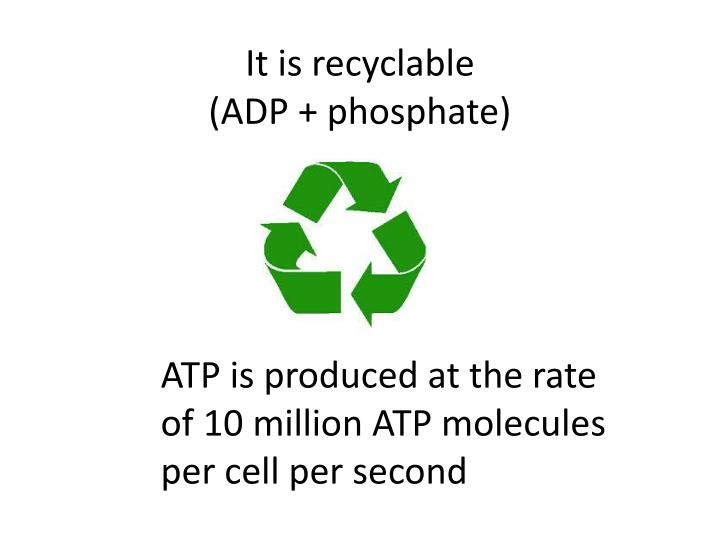 It is recyclable