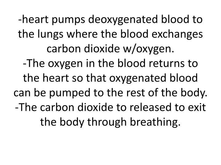 -heart