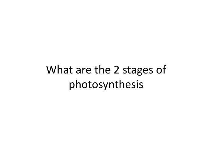 What are the 2 stages of photosynthesis