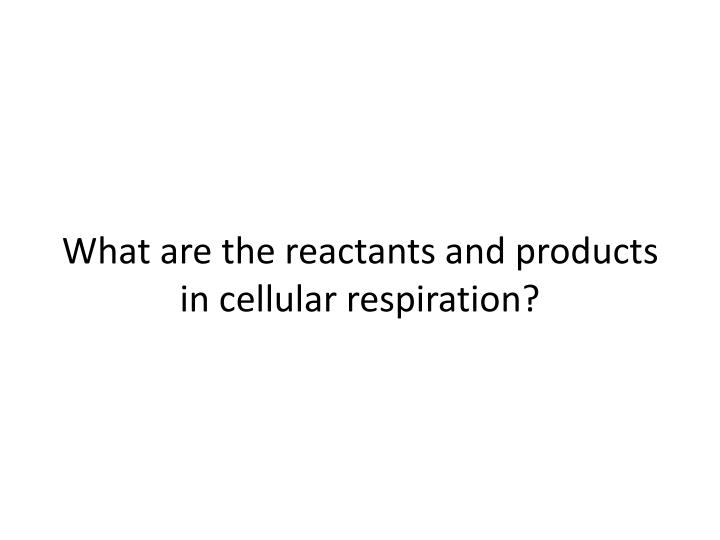 What are the reactants and products in cellular respiration?