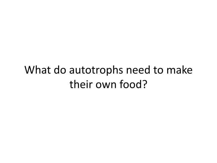 What do autotrophs need to make their own food