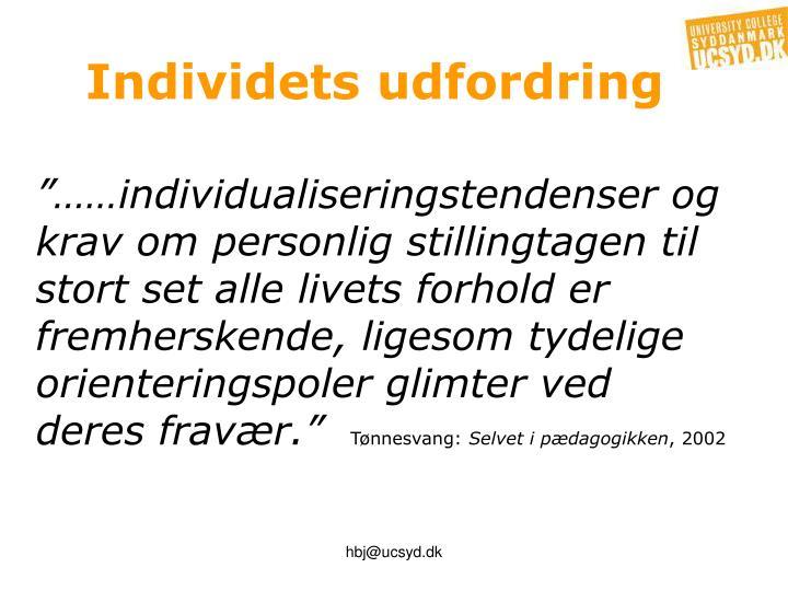 Individets udfordring