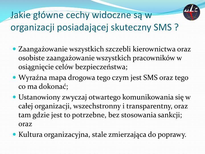 Jakie główne cechy widoczne są w organizacji posiadającej skuteczny SMS ?