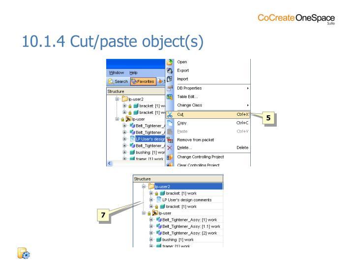 10.1.4 Cut/paste object(s)