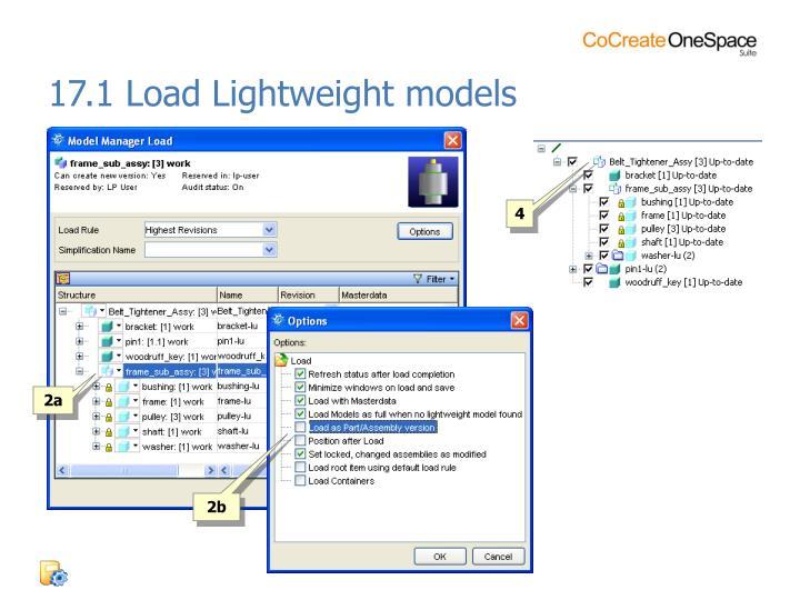 17.1 Load Lightweight models