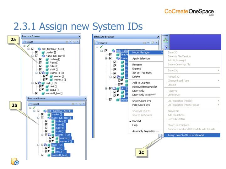 2.3.1 Assign new System IDs