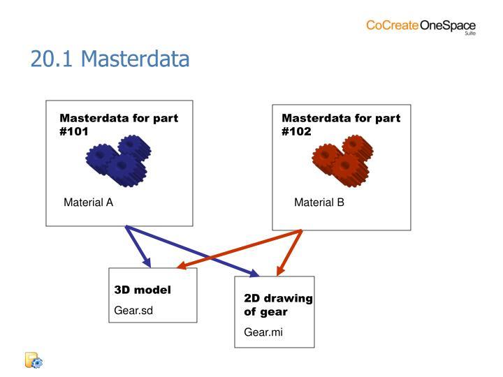 20.1 Masterdata