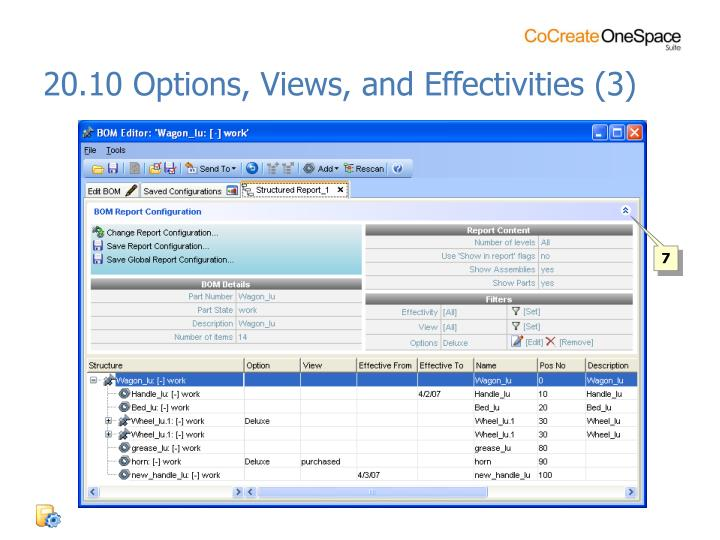 20.10 Options, Views, and Effectivities (3)