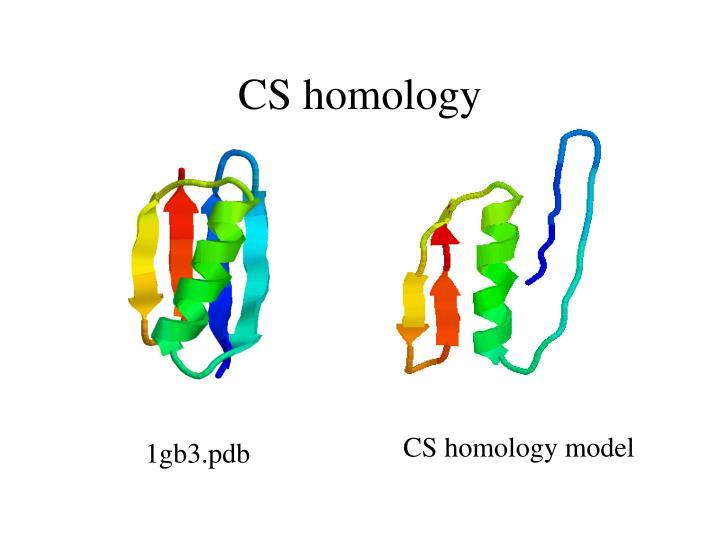 CS homology