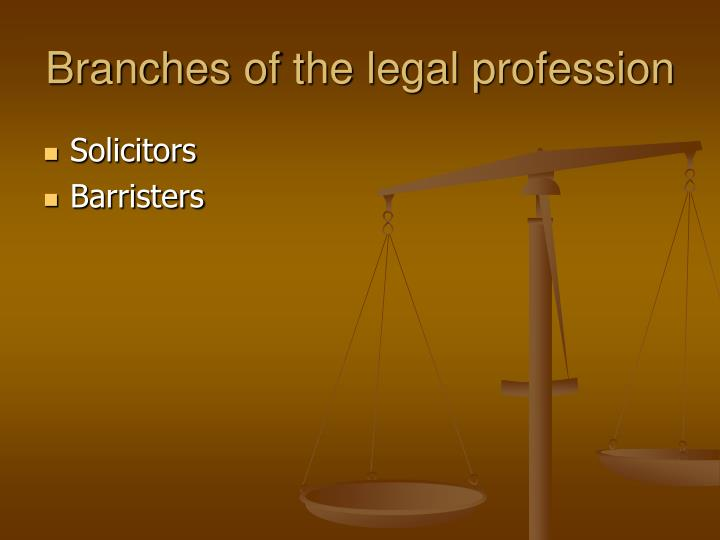 Branches of the legal profession