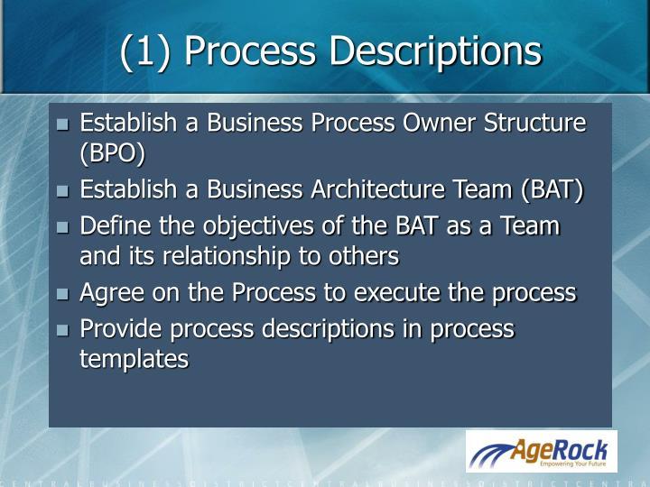 (1) Process Descriptions