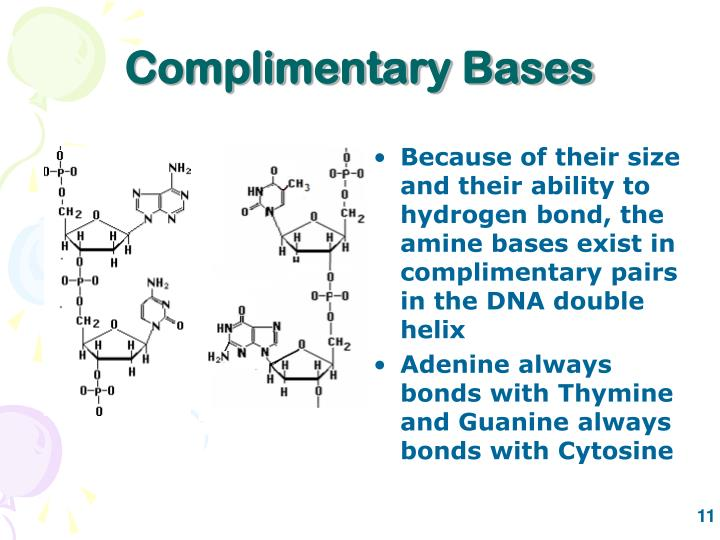 Complimentary Bases