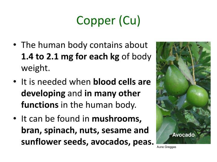 Copper (Cu)