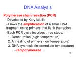 dna analysis9
