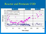 reactor and permeate cod