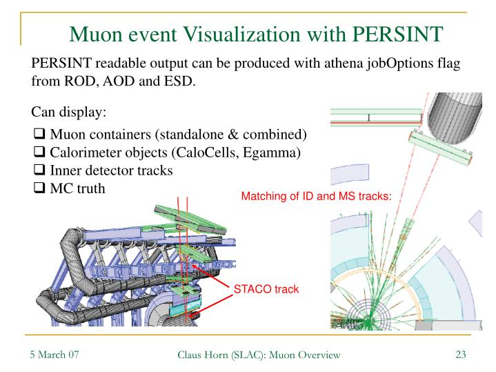 Muon event Visualization with PERSINT