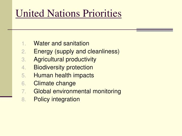 United Nations Priorities