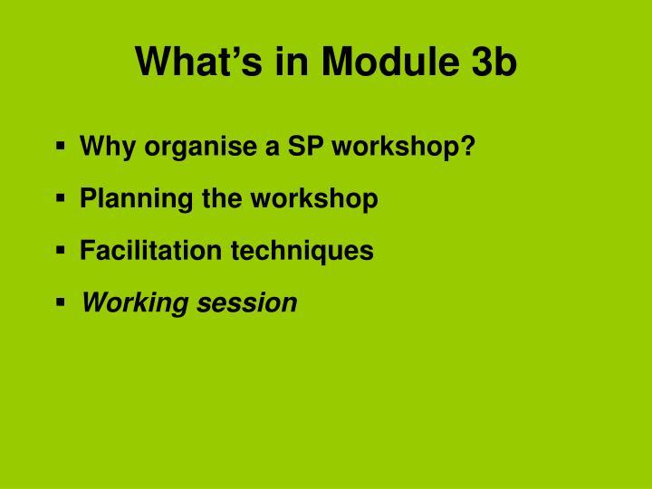 What's in Module 3b