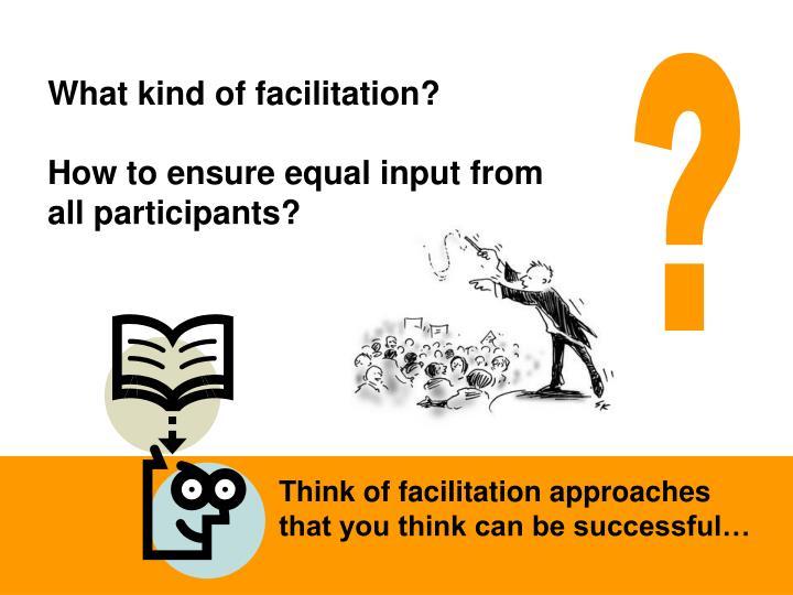 What kind of facilitation?