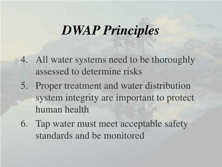 DWAP Principles