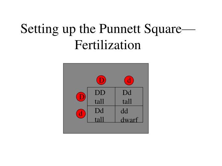 ppt mendelian genetics powerpoint presentation id 4295750