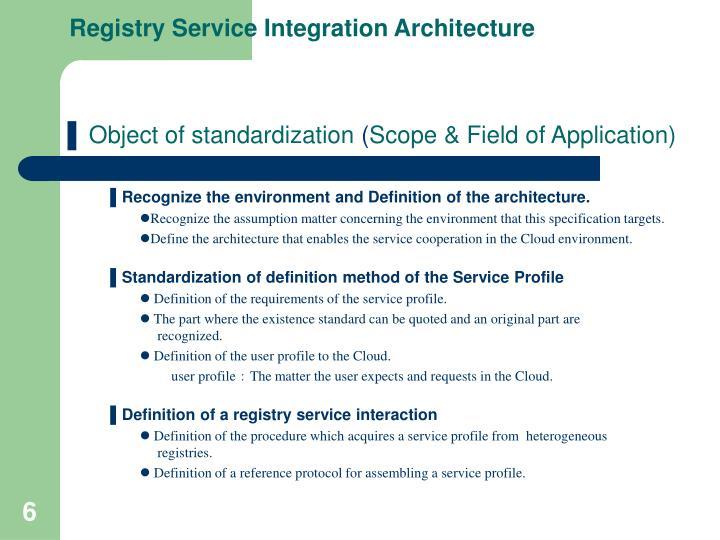 Registry Service Integration Architecture